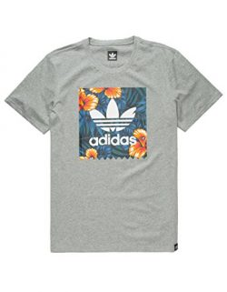 adidas Originals Men's Tops Skateboarding Graphic Tee, Black Heather/Sweetleaf, X-Large