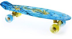 Merkapa 22″ Complete Skateboard with Colorful LED Light Up Wheels for Beginners (Sea Horse)