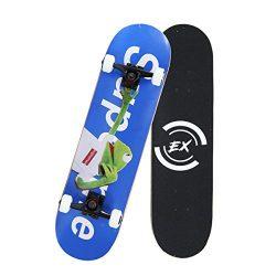Pro Skateboard 31″ X 8″ Standard Skateboards Cruiser Complete Canadian Maple 10 Laye ...